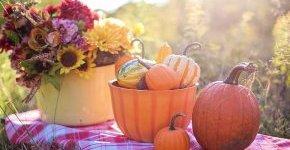 - Őszi hétvégi piknik extrákkal (min. 2 éj)