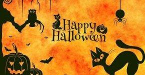 - Hátborzongató kalandozás a Halloween világában (min. 2 éj)