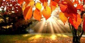 - Mámorító ősz (min. 2 éj)