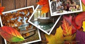- Akciós őszi-téli wellness pihenés (min. 2 éj)