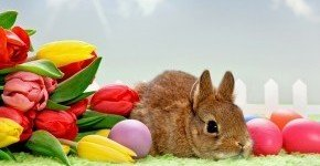 - Húsvéti ajánlat (min. 3 éj)