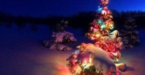 - Karácsonyi varázslat (min. 2 éj)