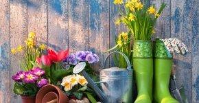 - Tavaszi Balaton (min. 2 éj)