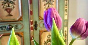 - Tavaszi kiruccanás (min. 2 éj)